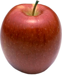 Apple King - Braeburn