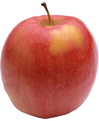 Apple King - Cripps Pink