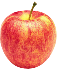 Apple King - Gala