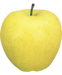 Apple King - Golden Delicious
